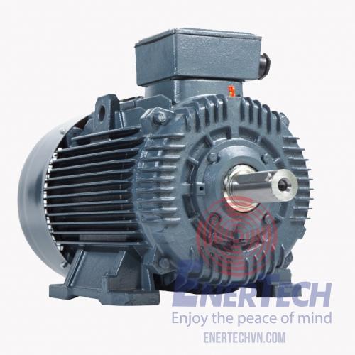 Động cơ điện 3 pha Enertech...