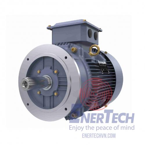 MARATHON Low Voltage IEC...